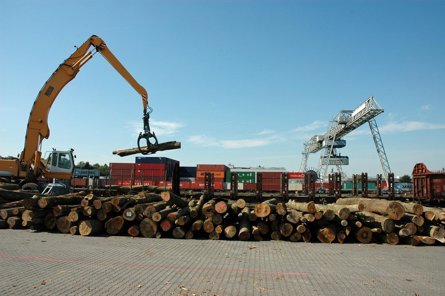 Umschlag Holz Container bayernhafen Aschaffenburg