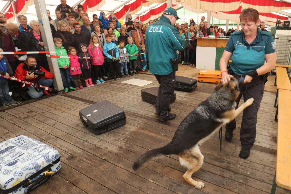 Zollhunde - Hafenfest 2016 - bayernhafen Nürnberg