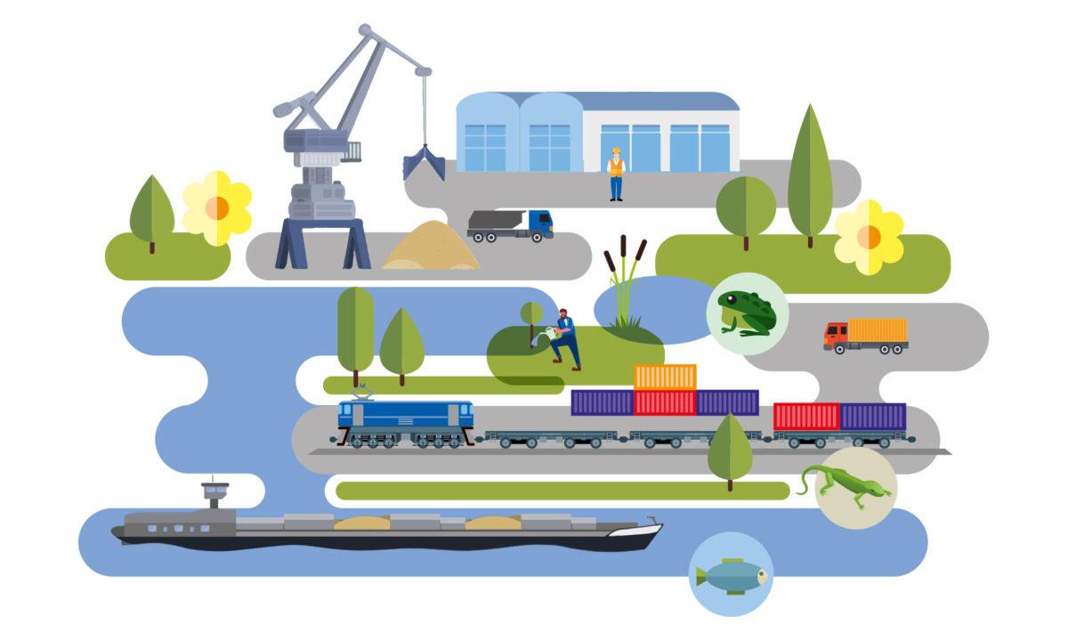 Illustration Naturraum Hafen - Ökokonto